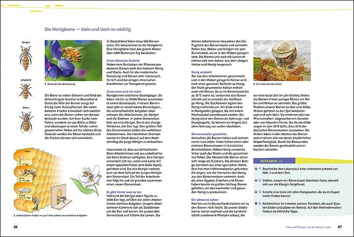 Arbeitsblätter Biologie Vögel Klett : Ernst klett verlag natura biologie ausgabe nordrhein