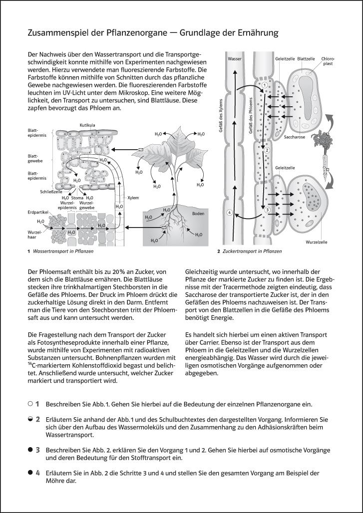 Ernst Klett Verlag - Natura Biologie Ausgabe Berufliche Oberstufe ab ...